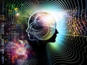 music_brainresized